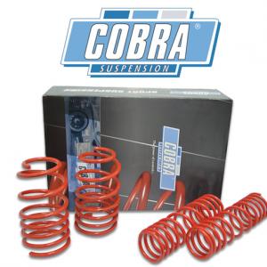 Cobra verlagingsveren